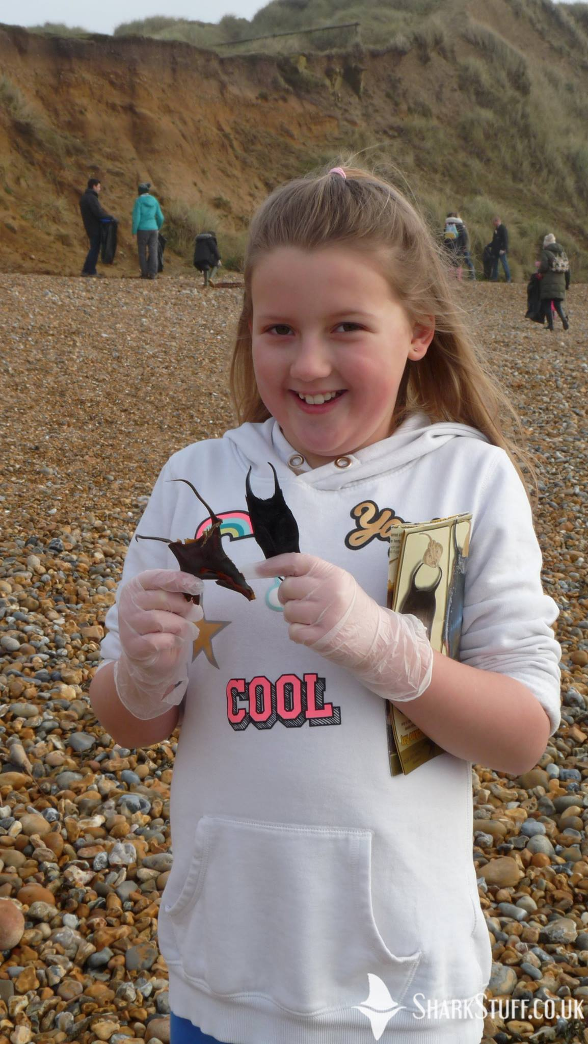 Shark and Ray Eggcase Hunt at Shell Bay!