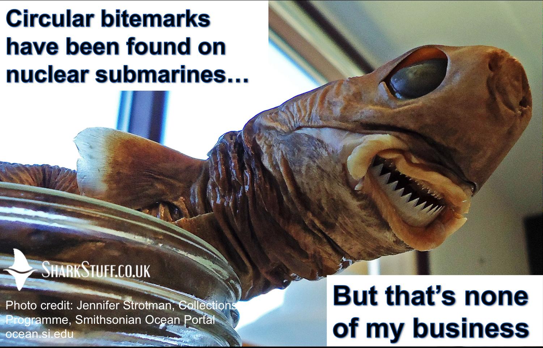 Shark Meme Monday #3 Round Up